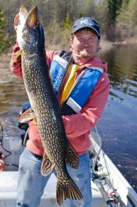 Believe it or not, this Pike is only an average fish on Garnham Lake.