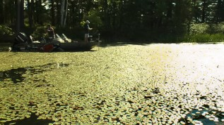 There are miles of classic back-water bass areas like this one on the French.