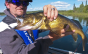441_Channel Oriented Walleye_01860x490