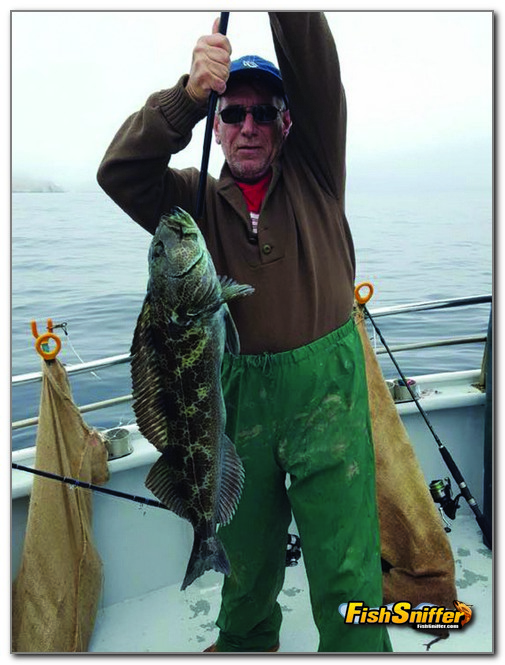 Rockfish And Bonito Fill The Bill For Local Anglers