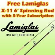 lamiglass deal copy