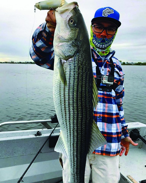 Owner Hooks Pro Angler Kenji Nakagawa landed and release this beautiful striped bass while working a topwater bait in the Delta on March 26.