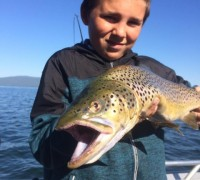 Bryan Roccucci of Big Daddy's Guide Service has been putting his clients on some fantastic Almanor trout this June. This impressive brown was fooled with a threaded worm.