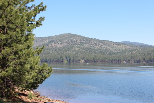 Stampede is in great shape for boating and fishing this year, since it  is full to the brim.