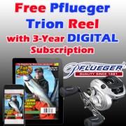 digital pflueger copy