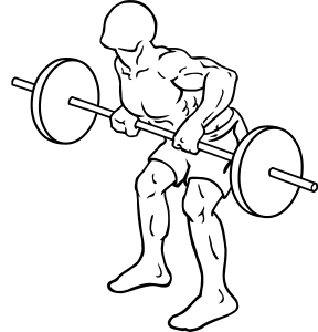 Barbell-rear-delt-row-2