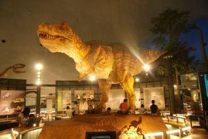72恐竜博物館