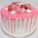 pink dripping macaron cake