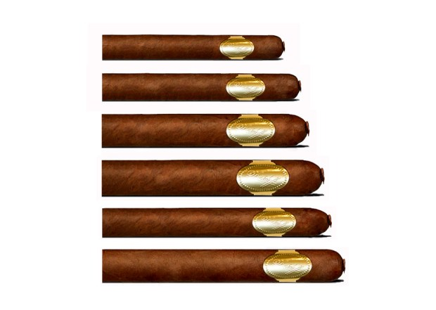Davidoff Puro d'Oro Gigantes Cigars