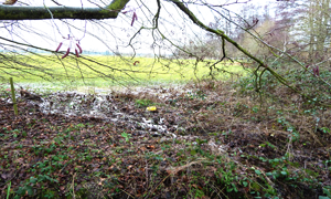 PUBLIC NOT WELCOME AT LOCAL FLOOD MEETING