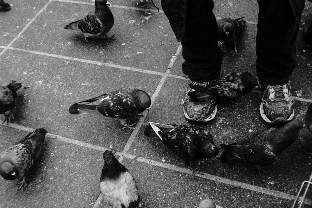"Giuseppe Belvedere is a quite known inhabitant of Paris. Almost a city attraction, one can say regarding the number of pictures taken of him and posted on social networks. His celebrity comes from the fact that Giuseppe feeds the birds. Nothing unusual, give bread to the birds, sure. But he does it in a special way. Because he turned this ordinary act into a political issue. Up to four times a day, he goes to the square in front of the Atelier Brancusi, at the Beaubourg neighbourhood, and throw around 5 kilos of cereals to the pigeons plus a ration of brioches to the sparrows, for the delight of tourists and photographers who register everything. Sometimes, and quite often, he shouts at those who scared the birds. A behaviour that makes him look like a crazy fellow. But Giuseppe can be anything but a crazy guy. His compromise with the birds comes from an anarchist political point of view more than from an unconditional love for the animals or some sort of ecological ideal, as himself explained me once. Born in Calabria and emigrated to France 40 years ago, Giuseppe worked as an accountant, paid his taxes and lived a normal life until the day he saw a demonstration in front of his house. A group of people who were denouncing an extermination program of the city birds. ""Because the pigeons never represented a problem to me, none referendum was never made on that subject, I decided to join this group"", he said. A few days later he was in charge of feeding the birds. Soon, he accumulate a pile of fines and letters from the city administration saying that his activity was illegal. At that time, he used to lived in a social flat. But a retired italian immigrant who was taking profit of a public service, who didn't paid his debts with the municipality and who kept throwing grains on public space was something too unbearable for the administration. So one day he was evicted. With no place to live, he started sleeping on van. A white car where he lives until today. By"