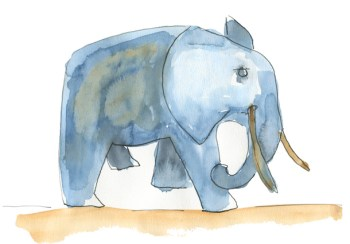 éléphant - w