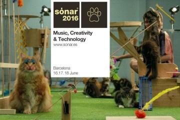sonar_main3