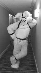 "From Ch.4 ""The Other Wild Kingdom."" As evidenced by this bunny's bondage wear, sometimes one fetish is not enough. Photo by Lori Ballard."