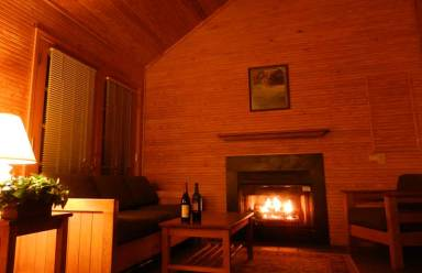 Silver River State Park cabin with cozy fireplace