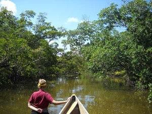 Florida paddling: Whiskey Creek in John U. Lloyd State Park, Dania Beach, Florida