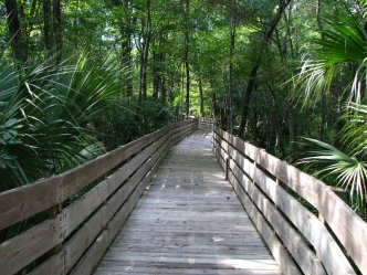 Jay B Starkey Wilderness Park In Pasco County Florida