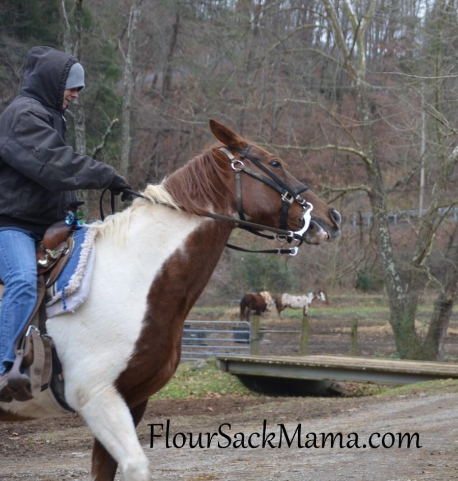 HorseRiderFlourSackMama