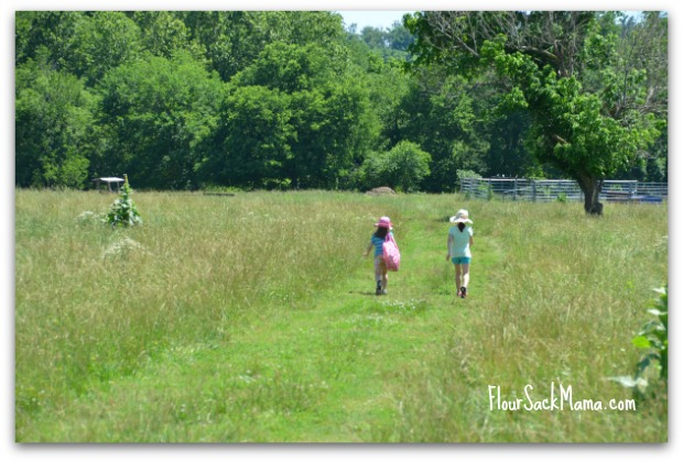 kids walk farm field
