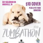 You are Invited to a Zumbathon Dance Party
