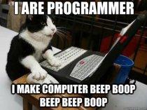 Programmer cat