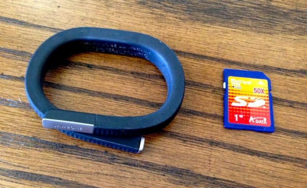 Jawbone with SD card for scale