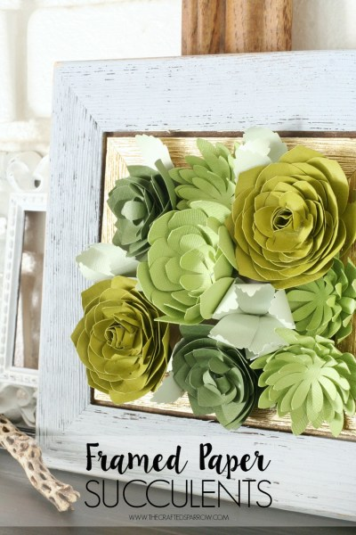 Framed-Paper-Succulents