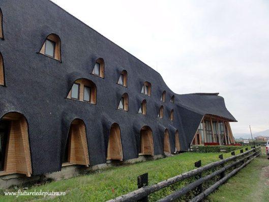 cladirea neagra din Plaiul Foii