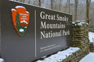 Great Smoky Mountains Fly Fishig Guides, Fly Fishing the Smokies