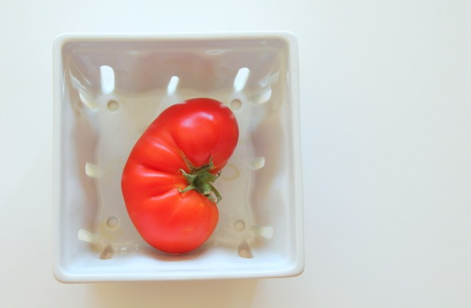foggydress_tomato