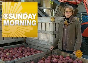 Foggy Ridge Cider - Resurrecting the lost apples