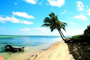 Die 31 schönsten Orte in den USA – Achtung: USA-Fernweh!!!