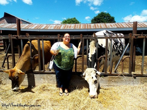 mary-with-cows-at-flayvors-of-cook-farm