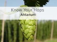 Know Your Hops - Ahtanum