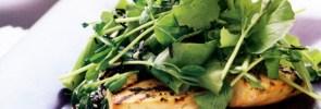 Marinated tofu steaks with rocket salad-foodflag