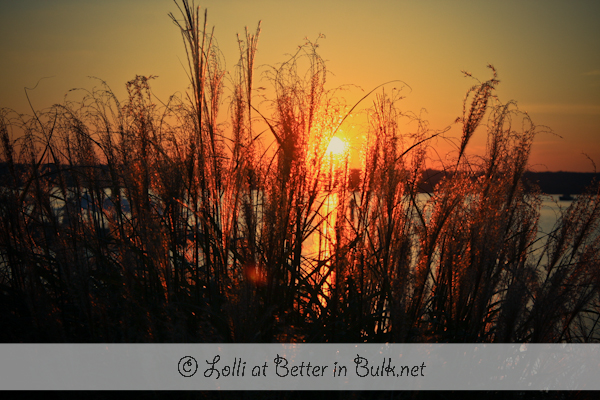 Autumn Sunsets…Ahh! PSF – GMYBS