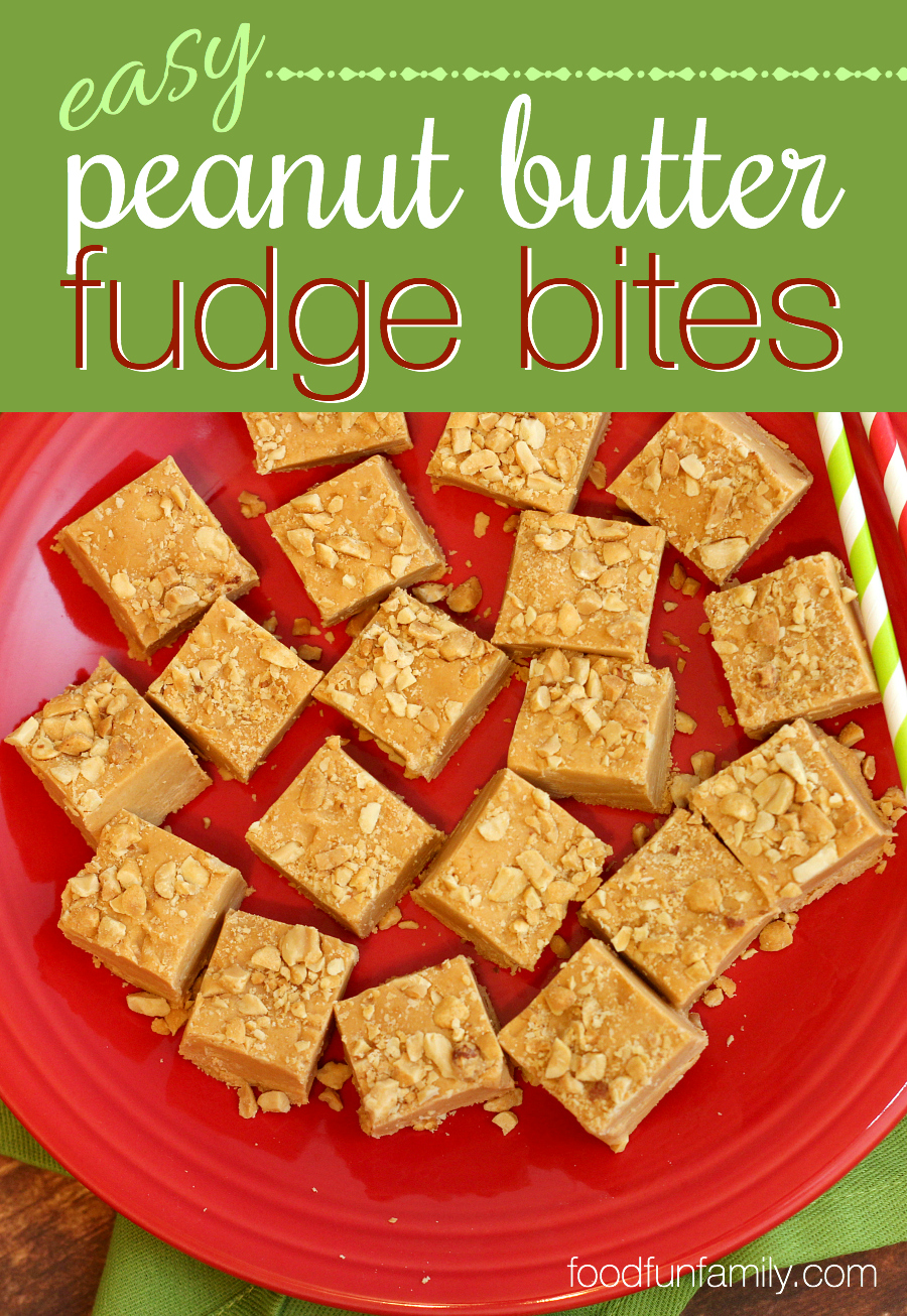 Easy Peanut Butter Fudge Bites Recipe - a quick and easy no-bake dessert recipe that everyone will love! These are a perfect addition to a holiday cookie plate, but I love to make these all year long!