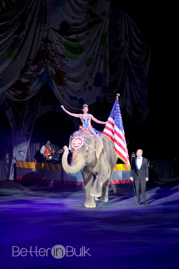 circus-preview-1