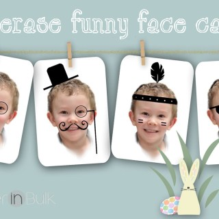 Easy Spring Craft for Kids: Dry Erase Funny Face Cards