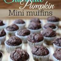 Weight Watchers Chocolate Pumpkin Muffins {1 PointsPlus}