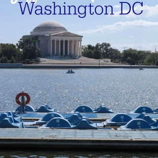 Tidal Basin Paddle Boats at the Jefferson Memorial in Washington DC #PSF