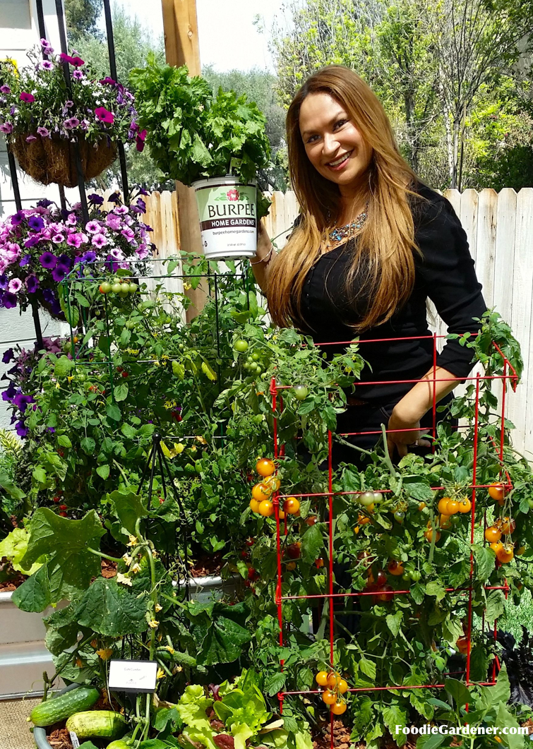 Shirley Bovshow Container Vegetable Garden With Tomatoes Cucumbers Burpee  Home Gardens Grow Vegetables On Your Patio