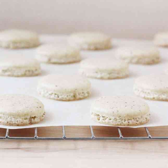 Vanilla bean macarons, ready to be assembled // FoodNouveau.com
