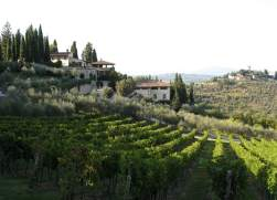 Visiting Italys Chianti Region During the Harvest Season