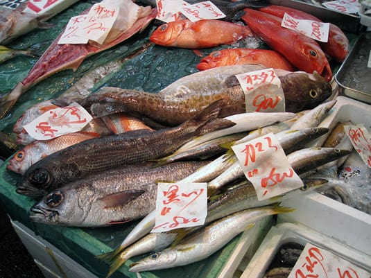 Fish, fish and more fish at Tokyo's Tsukiji Fish Market