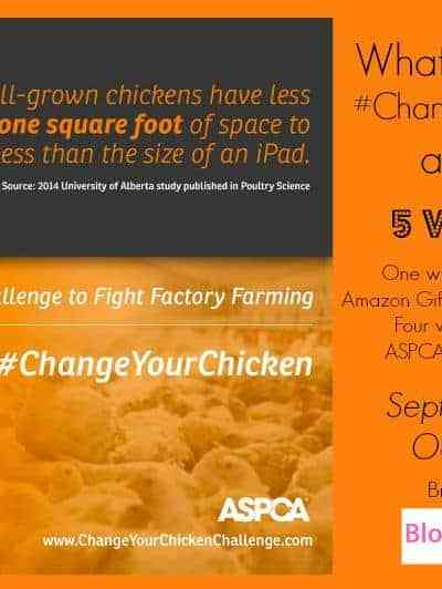 #WhatTheCluck Change the Way You Eat Chicken Giveaway!