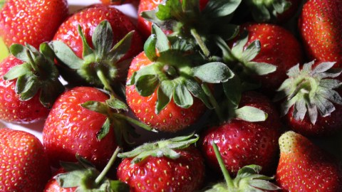 14 Things You Didn't Know About Strawberries