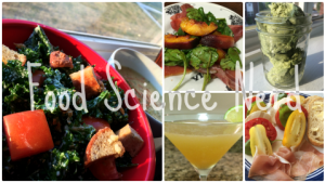blogging updates | foodsciencenerd.com