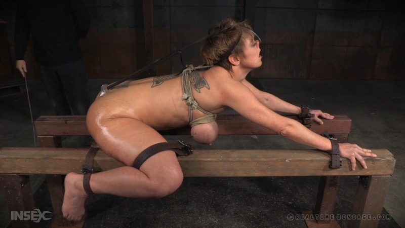cfnm club bondage bdsm videos