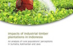 Impacts of industrial timber plantations in Indonesia: An analysis of rural populations' perceptions in Sumatra, Kalimantan and Java